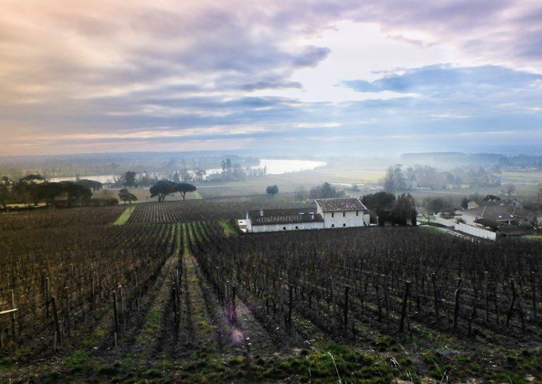 Randonnée Fronsac, ses châteaux et ses points de vue, proche Bordeaux (33)