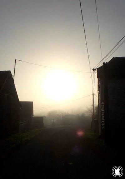 Brume du matin à Puyjourdes