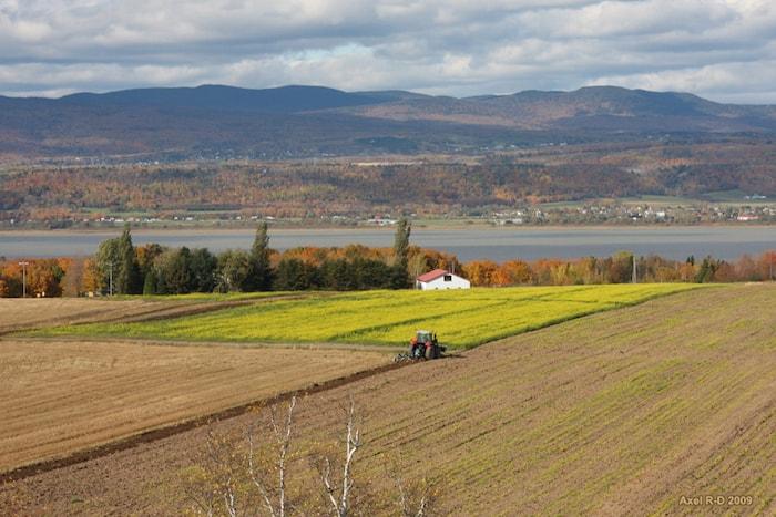 Que faire à Québec, visiter l'île d'Orléan
