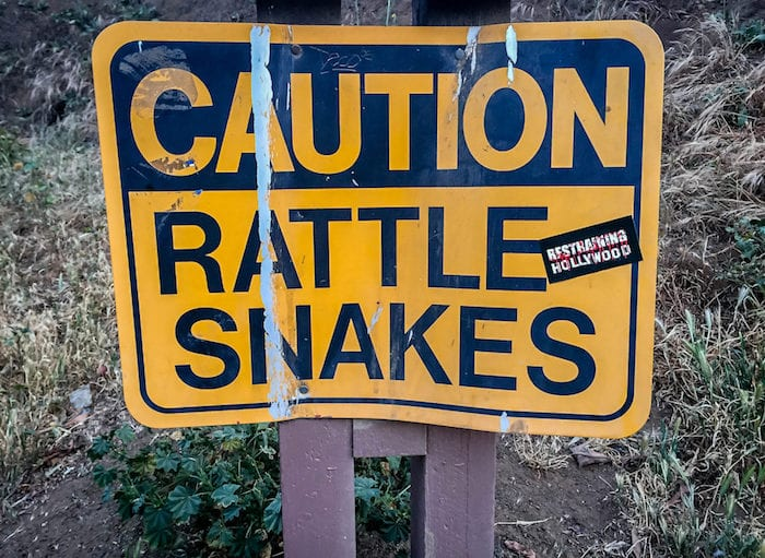 Caution-Snakes