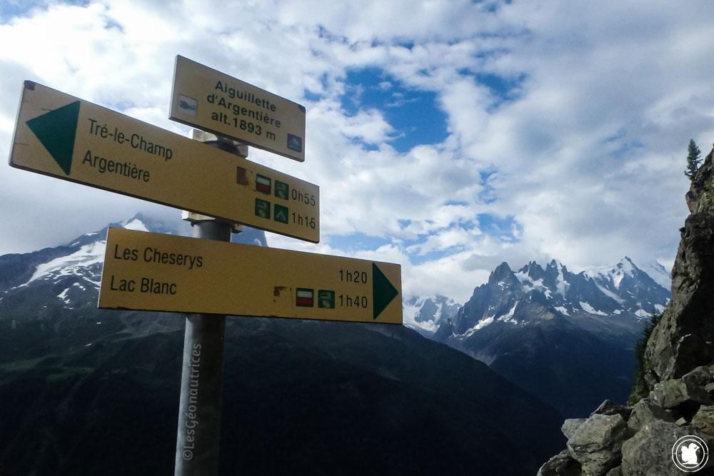 Vers Aiguillettes d'Argentière - Tour du Mont-Blanc, France