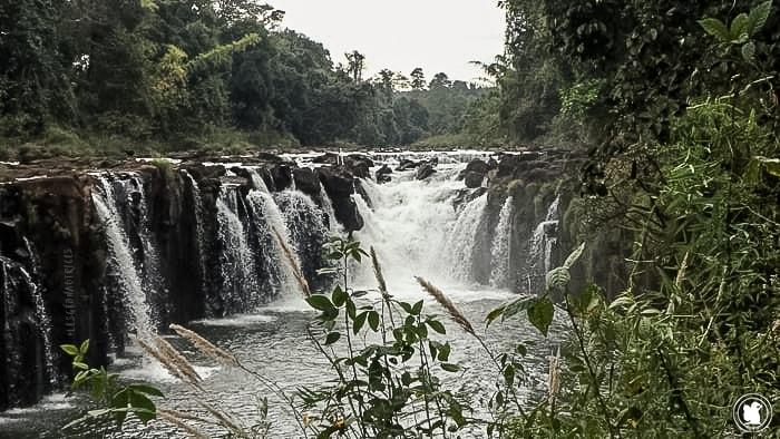 Tad Pasuam, Laos