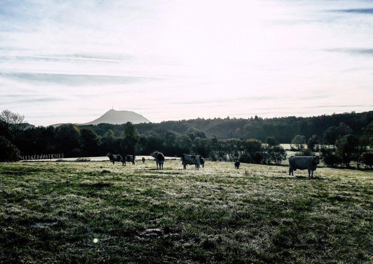 La Boucle des Dômes – Trek en Auvergne