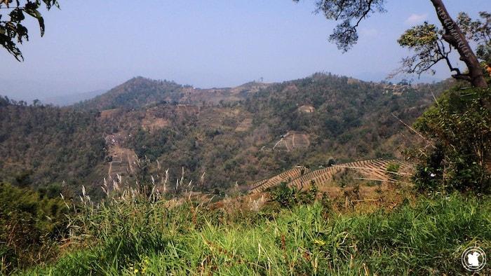 Sur la route au nord de Doi Suthep Pui National Park