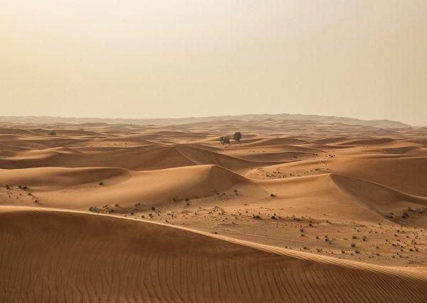 Afrique desert