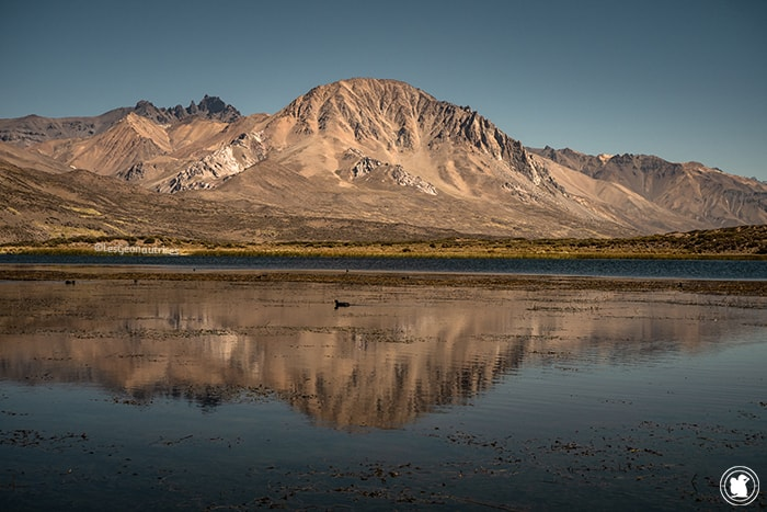 Laguna Sosneado