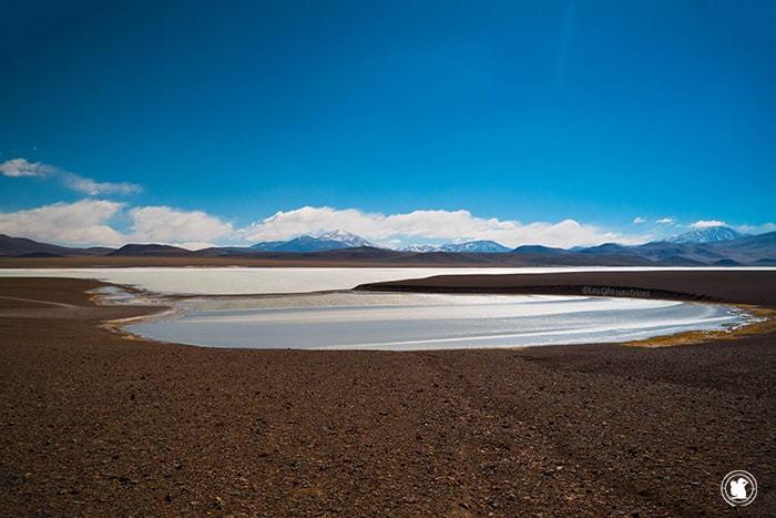 La Laguna Brava lors de notre road-trip dans la province de La Rioja, Argentine