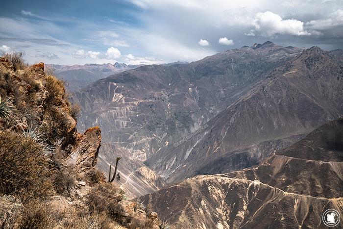 Marcher dans le Canyon de Colca