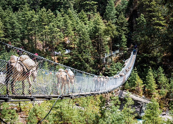Bridge Khumbu Népal