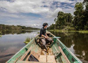 Premiers pas dans la forêt amazonienne péruvienne, près de la ville d'Iquitos