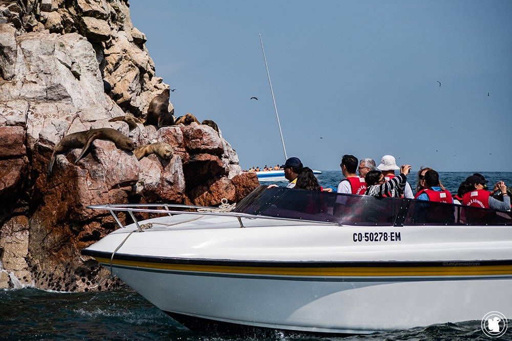 Bateau de touriste proche des lions de mer aux îles Ballestas à Paracas