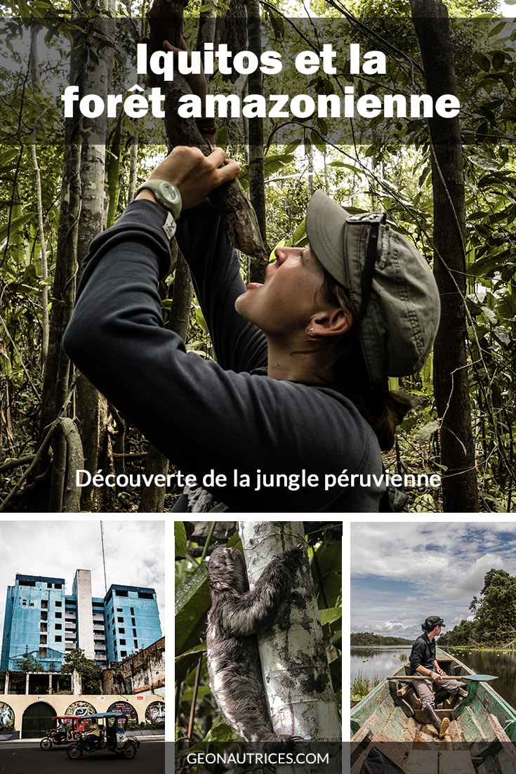 Un séjour dans la forêt amazonienne, c'est un dépaysement total et profond ! Rien n'est semblable à ce que l'on connait. La densité et la profondeur de la forêt est juste incroyable, la végétation luxuriante est impressionnante ! Coup de cœur assuré ! #voyage #amazonie #perou