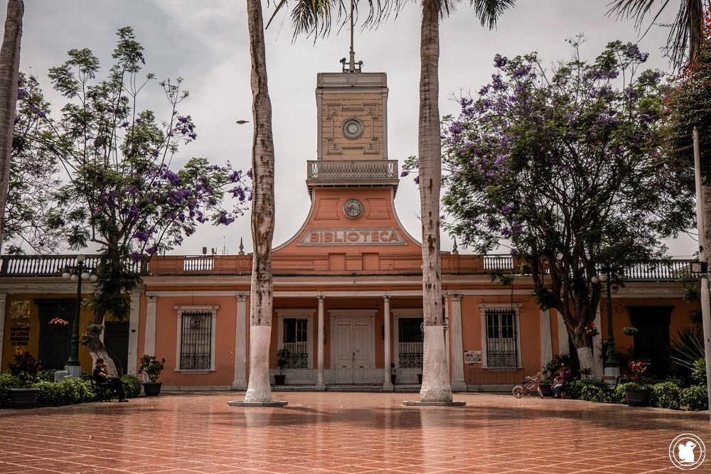 Bibliothèque de Barranco