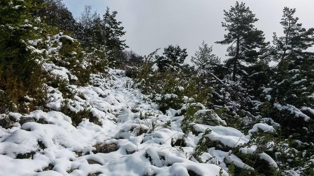 Permiers pas d'Ariane dans la neige sur le GR4