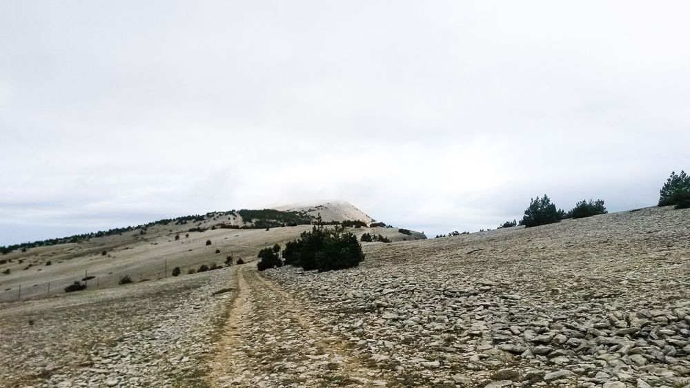 GR4 d'Ariane - Presque arrivée au sommet du Mont Ventoux