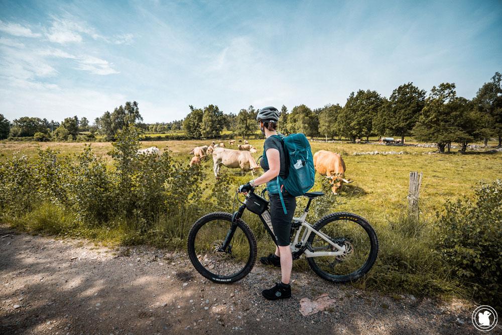GTMC VTT, 4 jours sur la Vélo & fromages en Lozère