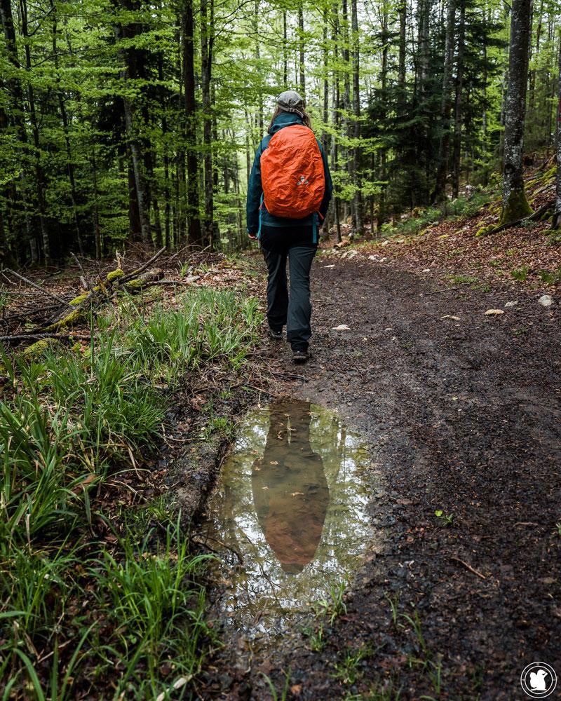 Test sac à dos randonnée Vaude Wizard 24+4 avec housse de pluie